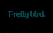 prettybird logo